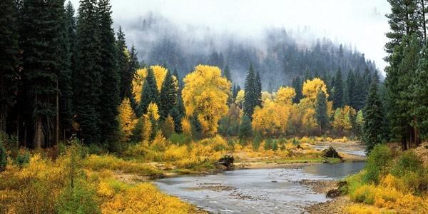Chewack River Okanogan National Forest Washington 600
