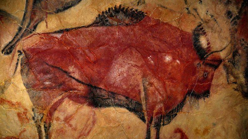 cr caverna lascaux franca 795x447 1