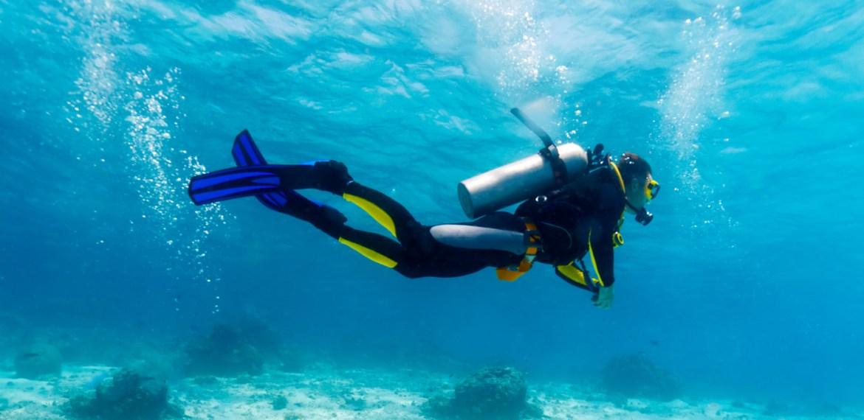 Os Melhores Mergulhos do Mundo