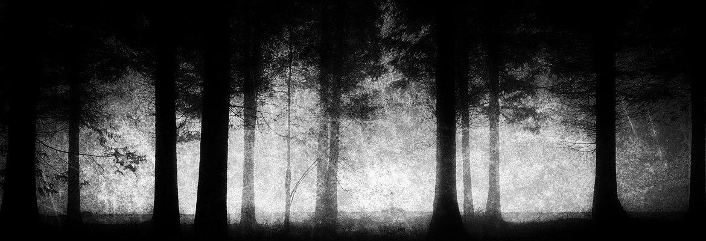 Os fantasmas são reais?