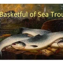 A Basketful of Sea Trout Summary And Questions