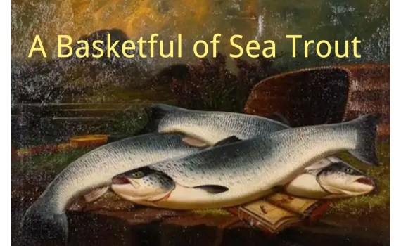 A Basketful of Sea Trout | Summary And Questions 1