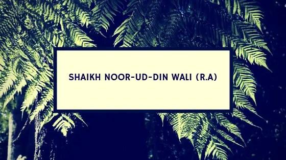 Sheikh Noor ud Din Wali