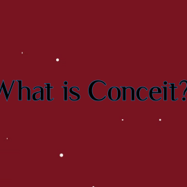 What is Conceit?