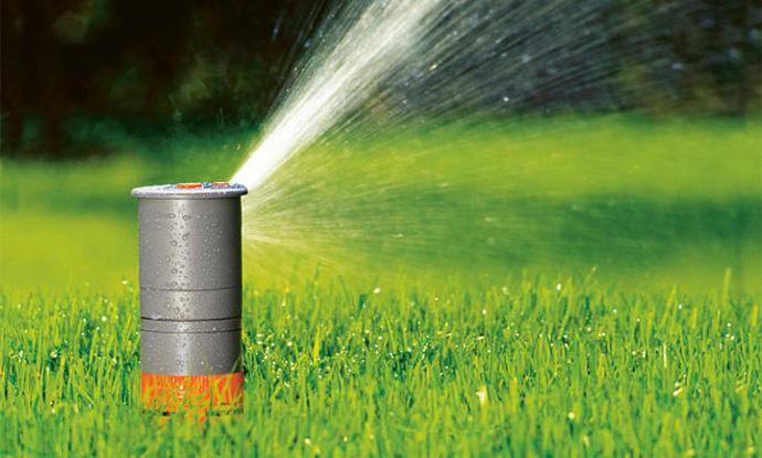 Rasen bewässern – So gießt Du richtig bei der aktuellen Sommerhitze