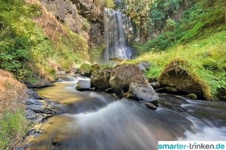 Charakteristischer Geschmack und ökologisches Plus: regionales Mineralwasser
