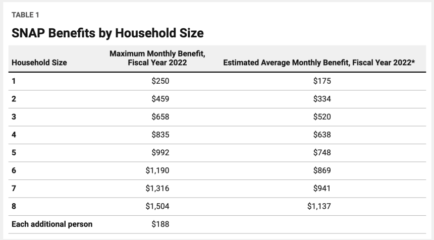 SNAP Average Monthly Benefit Amount for 2022
