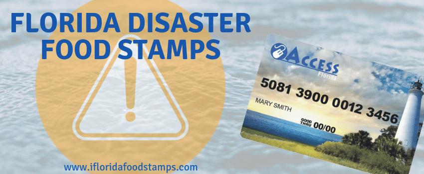 Disaster Food Stamps Florida Smarter Florida