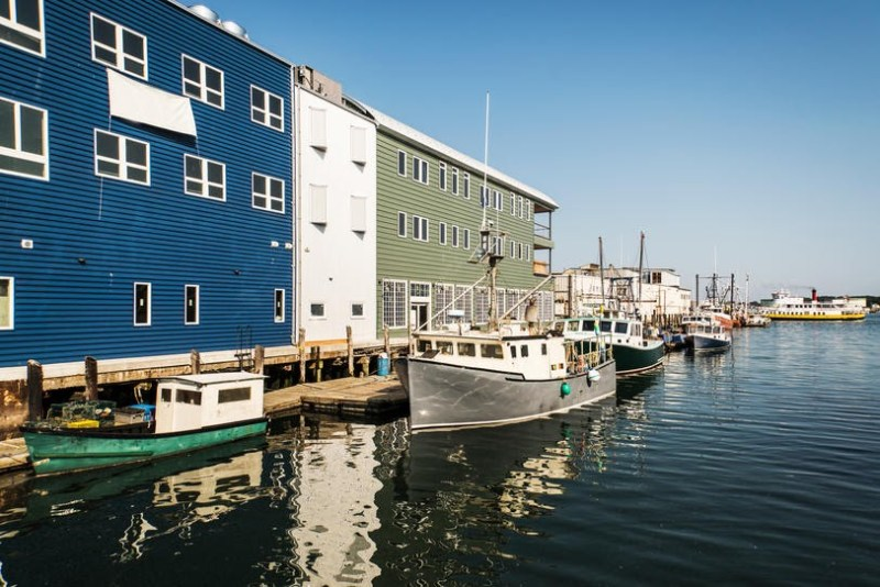 Maine Portland F1MXY5