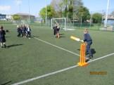 All star cricket (101)