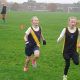 X Country Nov 15 (46)