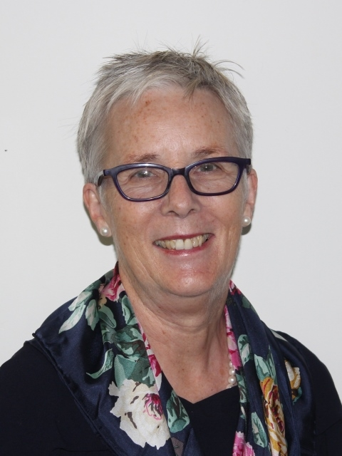 Councillor Alison Kelly : Local Authority Governor; Chair of the Staffing Committee; Member of the Finance and Audit Committee; Safeguarding Link Governor; Appointed September 2013