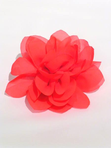 Lucia's Flower