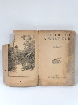 Letters To A Wolf Cub