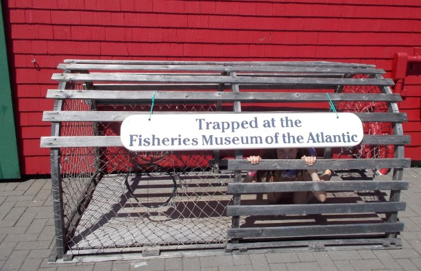 Trapped in a lobster cage