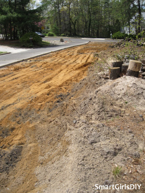 Bonus property after road torn out