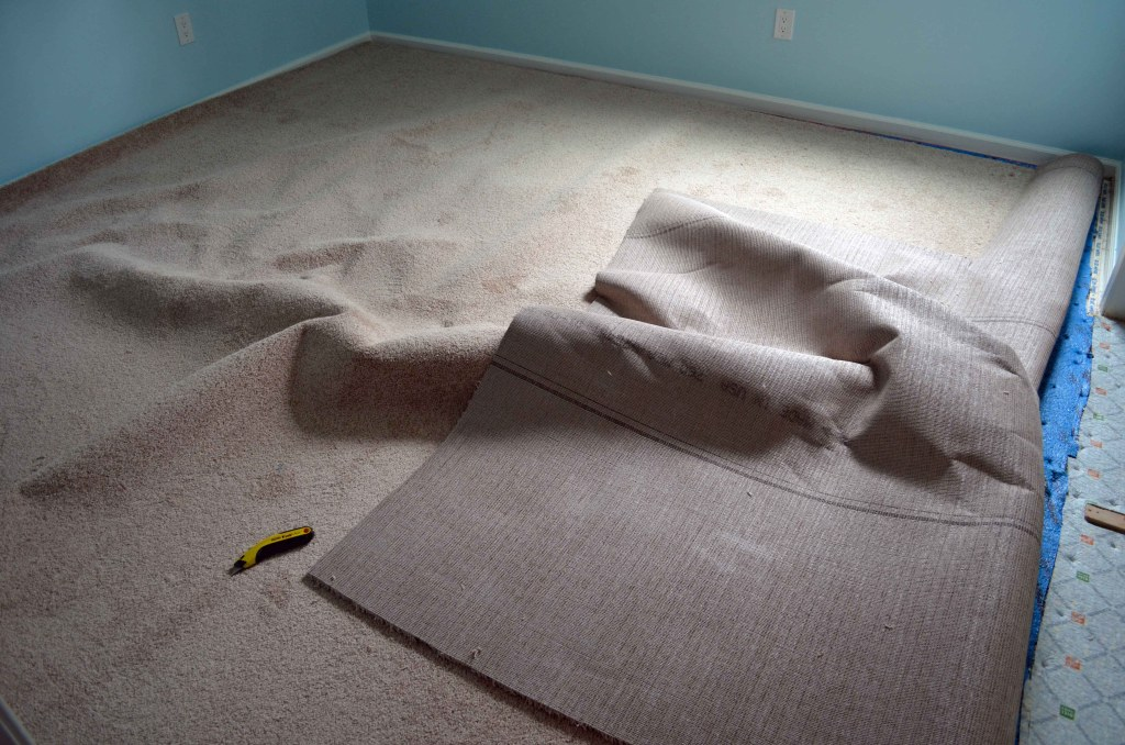 Oops - that's what happens when you bend the carpet roll