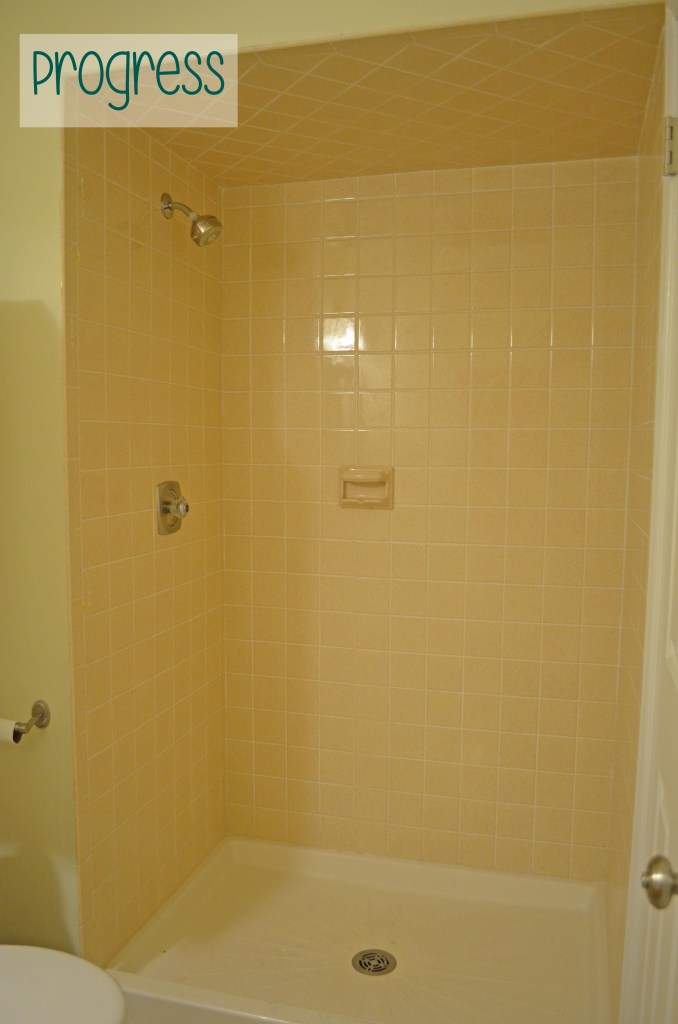 Progress on the guest shower - I removed the ugly doors