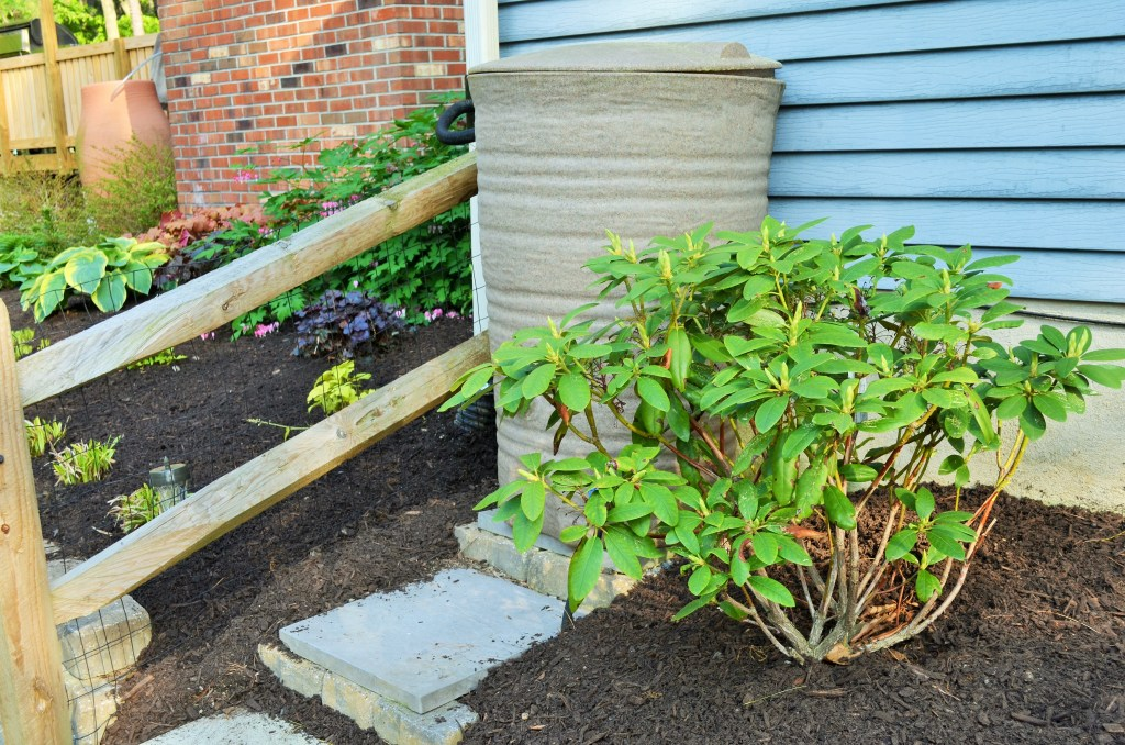 Rainbarrel and mulch spread on two different days