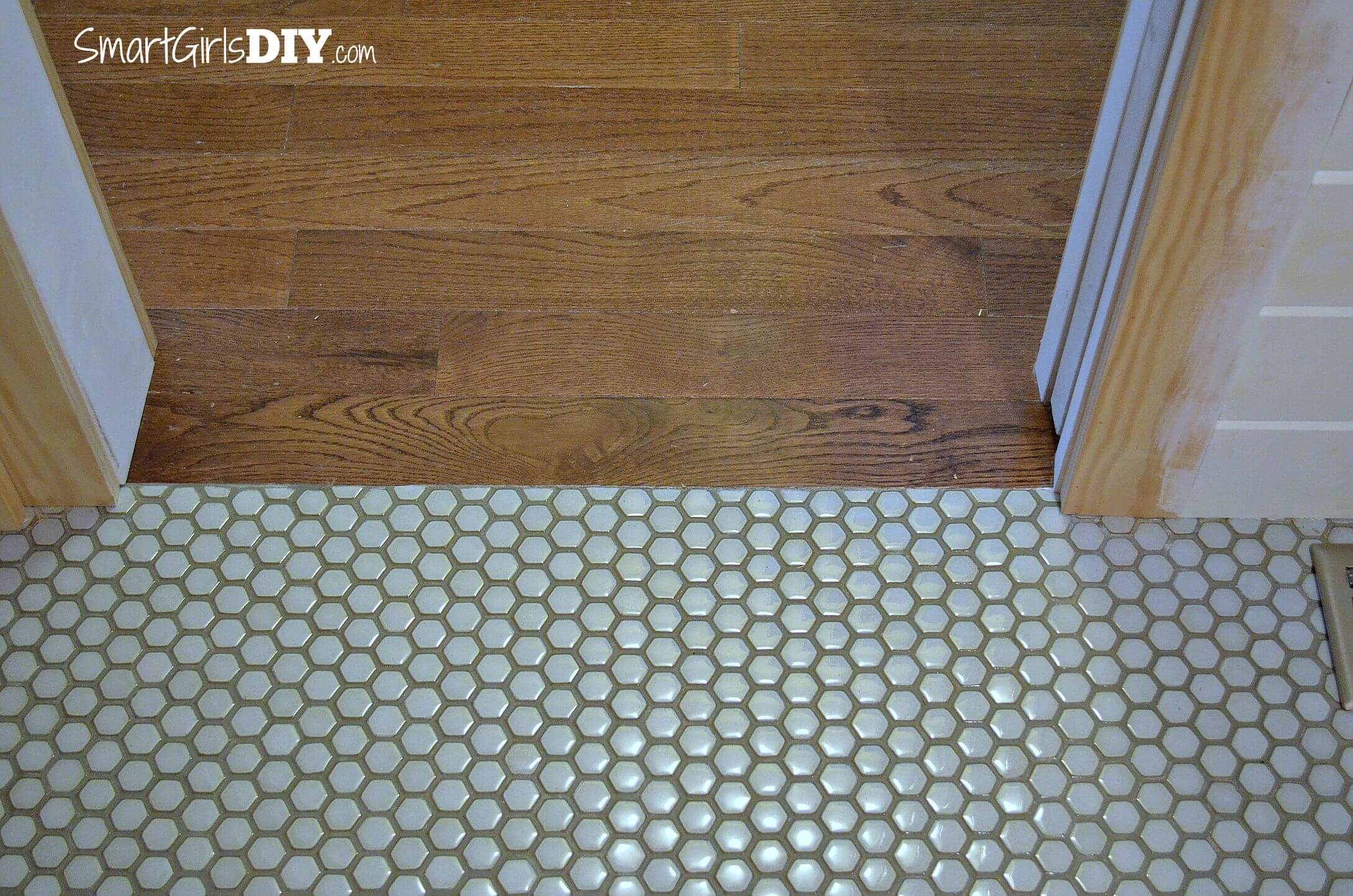 Guest bathroom 7 diy hex tile floor smooth transition between mosaic floor tile and hard wood flooring dailygadgetfo Images