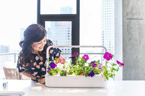 Click & Grows Smart Garden. Smart plantekasse.