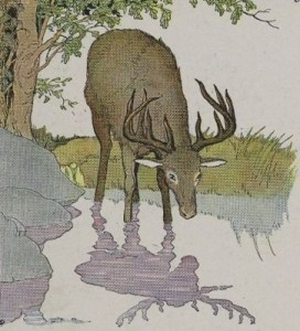 Read more about the article THE STAG AND HIS REFLECTION – Aesop Fables for Kids