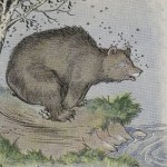 THE BEAR AND THE BEES – Aesop Fables for Kids