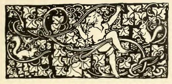 Irish-Fairy-Tales-by-James-Stephens-05