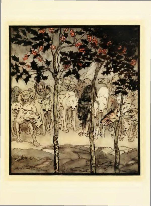 Irish-Fairy-Tales-by-James-Stephens-23