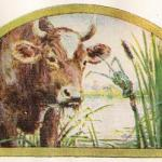 Read more about the article The Frog Who Wished To Be As Big As The Ox – Jean De La Fontaine Fables