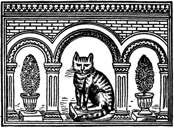 The Cat and the Mouse – Persian Fairy Tales