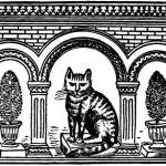 Read more about the article The Cat and the Mouse – Persian Fairy Tales