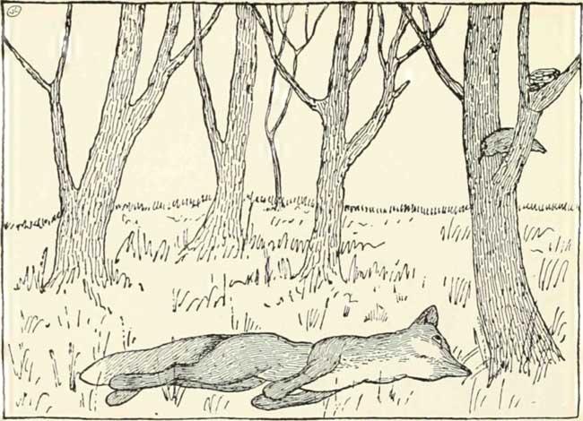 THE-FOX-AND-THE-BLACKBIRD-09