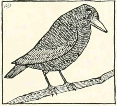 THE-FOX-AND-THE-BLACKBIRD-10
