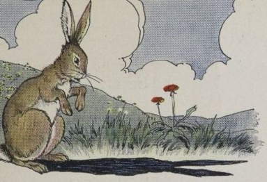 THE HARE AND HIS EARS – Aesop Fables for Kids