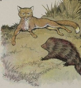 Read more about the article THE FOX AND THE HEDGEHOG – Aesop Fables for Kids