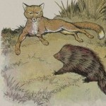 THE FOX AND THE HEDGEHOG – Aesop Fables for Kids