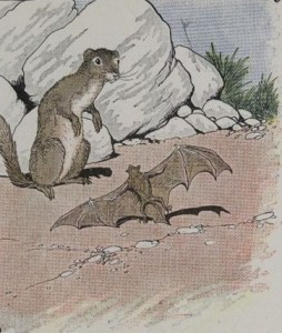 Read more about the article THE BAT AND THE WEASELS – Aesop Fables for Kids