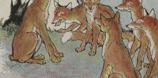 Aesop-Fables-for-Kids-81