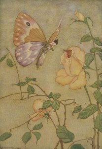 Read more about the article THE ROSE AND THE BUTTERFLY – Aesop Fables for Kids