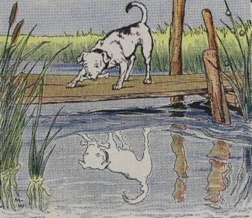 THE DOG AND HIS REFLECTION – Aesop Fables for Kids