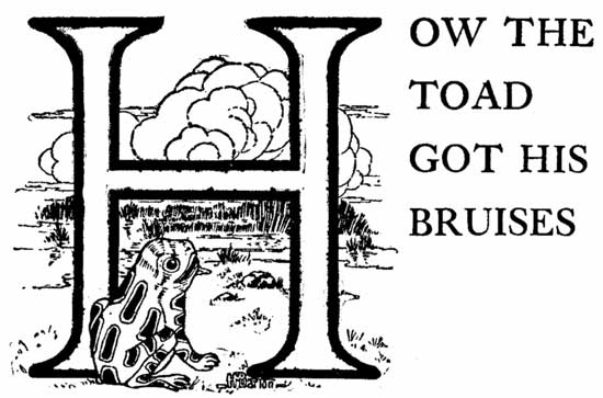 How the Toad Got His Bruises – Brazilian Fairy Tales