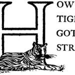Read more about the article How the Tiger Got His Stripes – Brazilian Fairy Tales