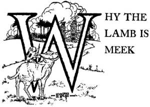 Read more about the article Why the Lamb Is Meek – Brazilian Fairy Tales