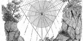 "Mythical stories for children - ""ARACHNE"""
