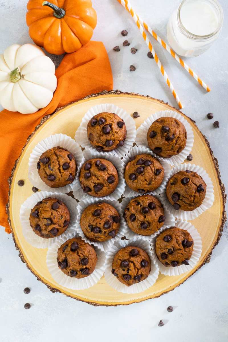Pumpkin Muffins packed with pumpkin puree and chocolate chips. - Smart Little Cookie