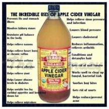 apple-cider-vinegar-uses-e1366819588997