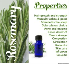 Aromatherapy-Massage-with-Rosemary-Oil-Rosemary-Oil