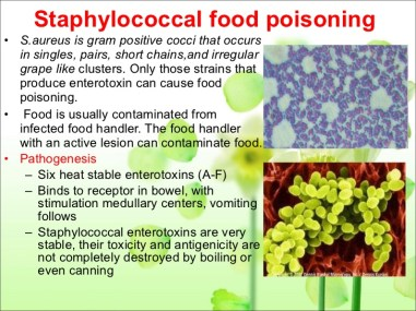 bacterial-food-poisoning-12-728