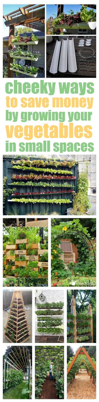 Vertical Vegetable Garden IdeasSmart Money Simple Life